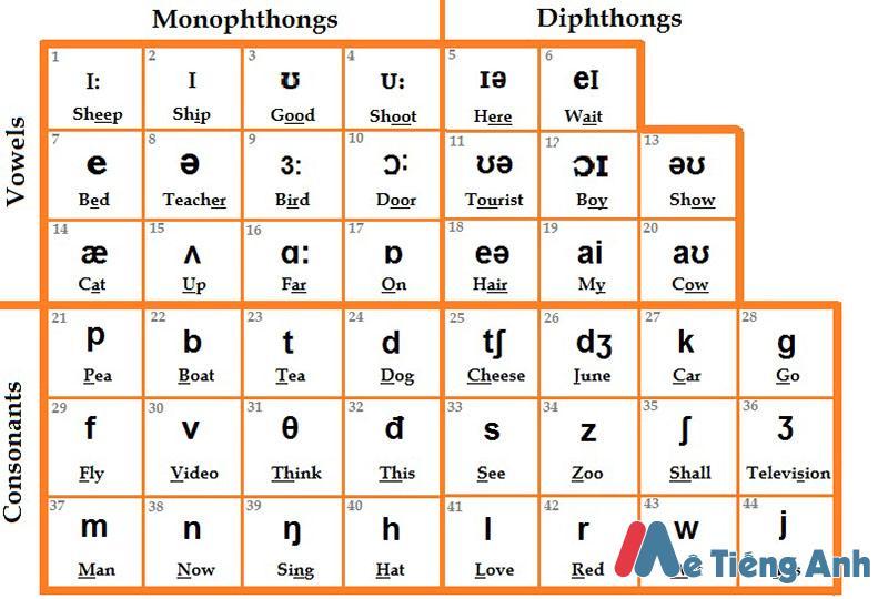 Cách phát âm trong tiếng anh chuẩn quốc tế